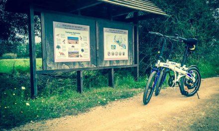 In bicicletta nel percorso naturalistico di Vilamoura in Algarve