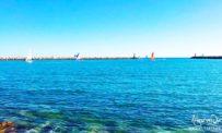 Video barche a vela nel porto di Vilamoura in Algarve Portogallo