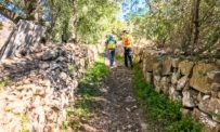 Trekking, passeggiate ed escursioni in Algarve