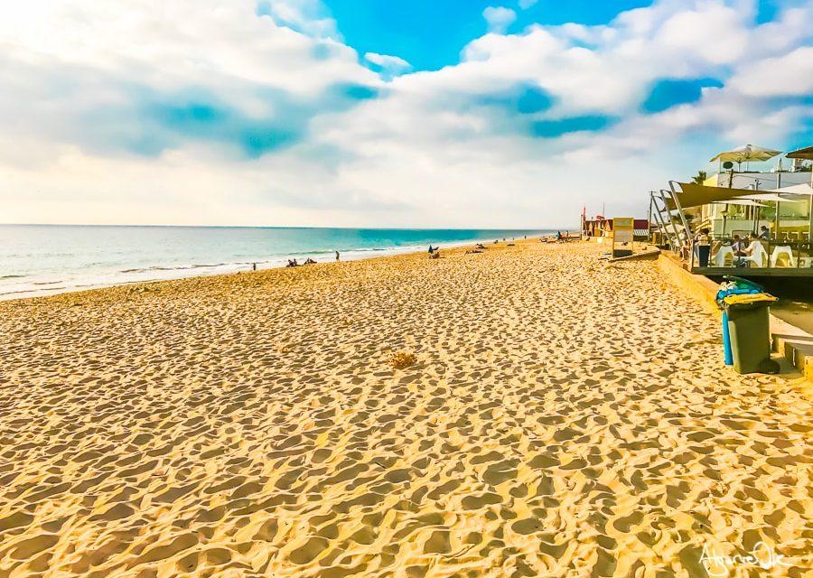 Hotel appartamenti Faro Algarve offerte