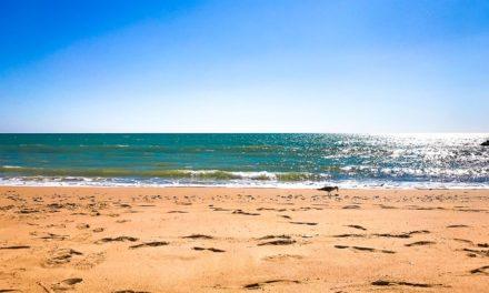 Ristoranti in Algarve: un pranzetto e una bella passeggiata in riva all'oceano