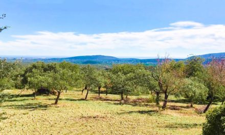 Video passeggiata in Algarve Portogallo immersi nella natura