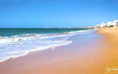 Aquashow Park in Algarve: il parco acquatico più famoso del Portogallo